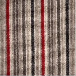 Spectrum stripe colour poppy.