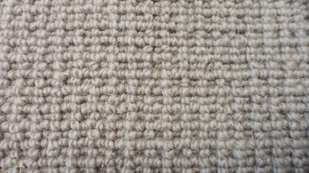 Bodmin textured loop pile, colour Dusty dawn.